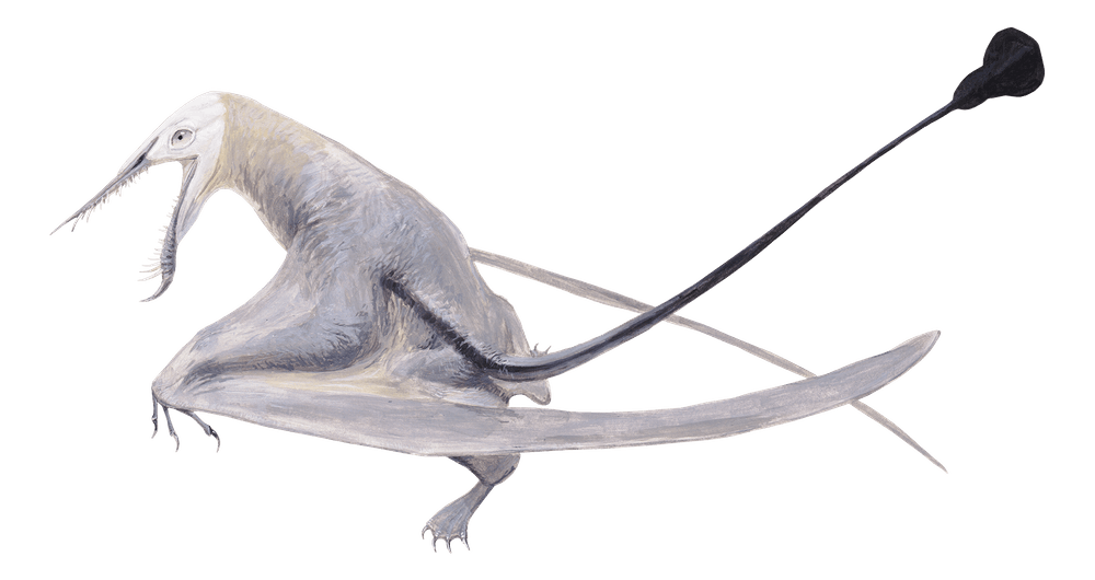 Klobiodon